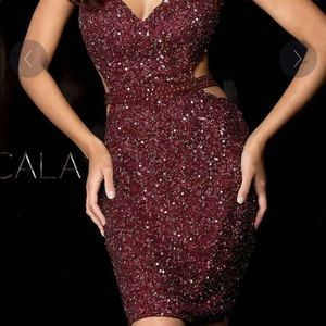 Burgundy sparkly fitted dress